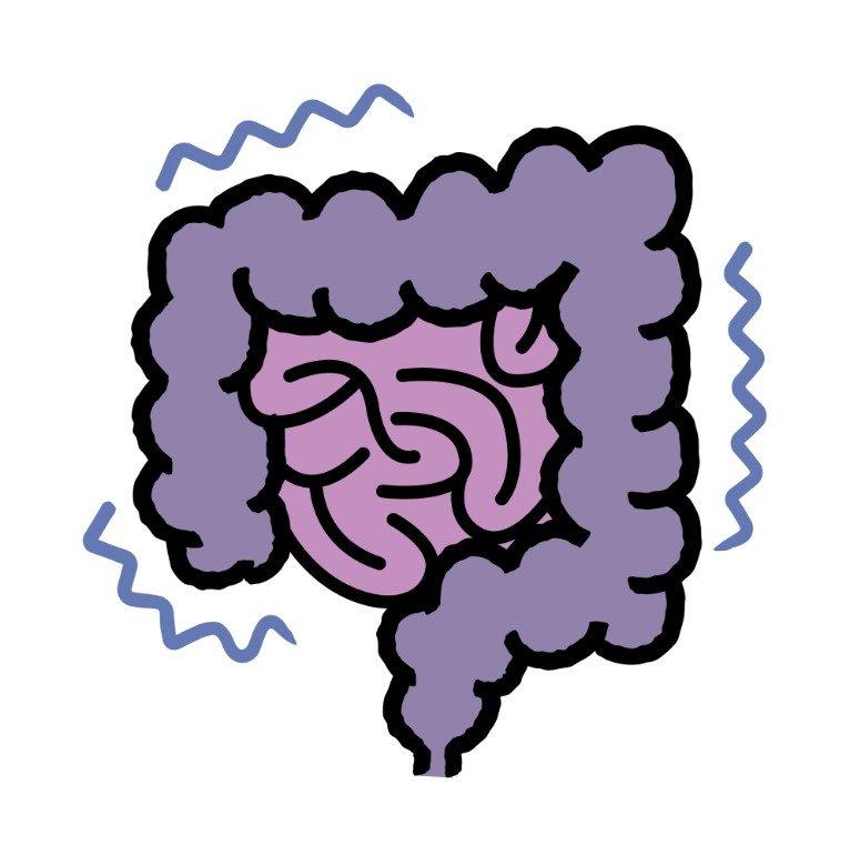 大腸カメラ(大腸内視鏡検査)で見つかる代表的な疾患